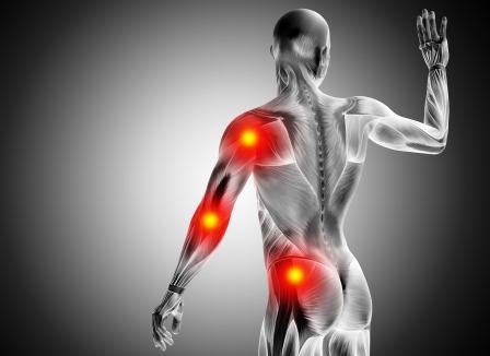 3D ilustrácia tela človeka so zdôraznením kĺbov - lakťový, bedrový a ramenný